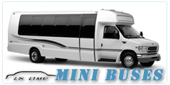 Mini Bus rental in Honolulu, HI
